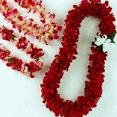 Leis of Hawaii